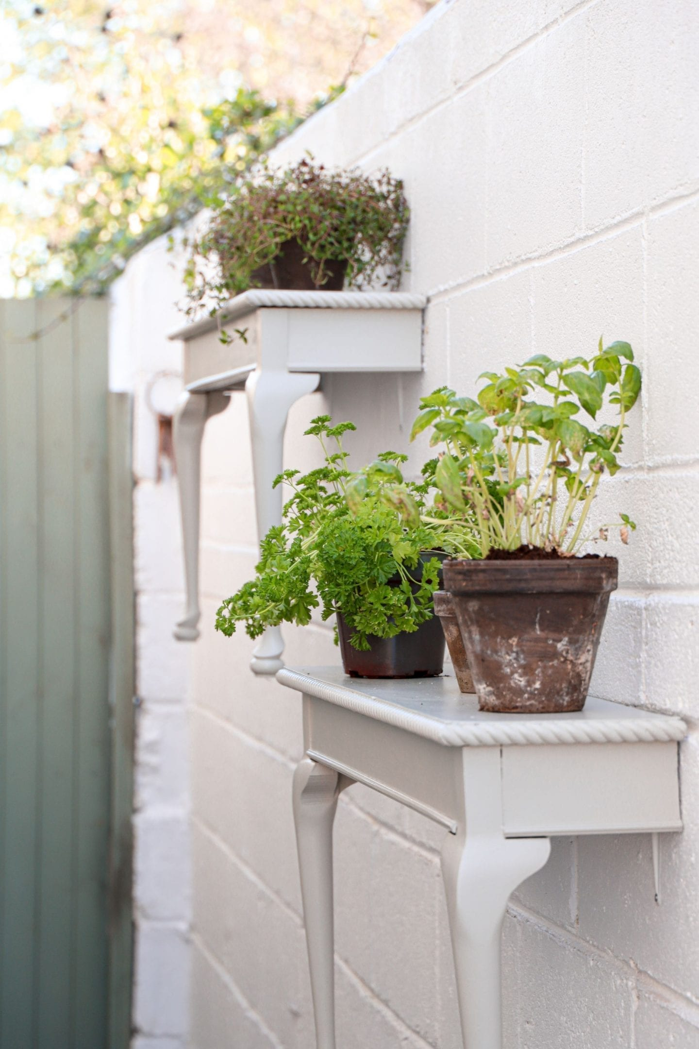How to make the most of your garden during lockdown