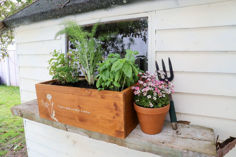 DIY mini Herb Garden